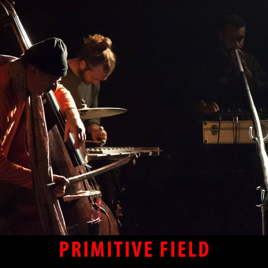 primitive field